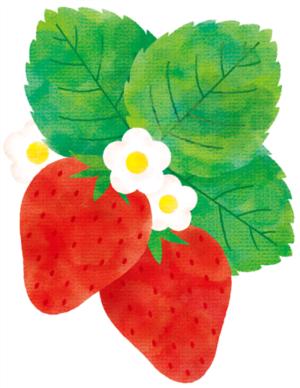 酸っぱいイチゴを甘くする方法!ちょっと工夫するだけで甘く美味しく変身!